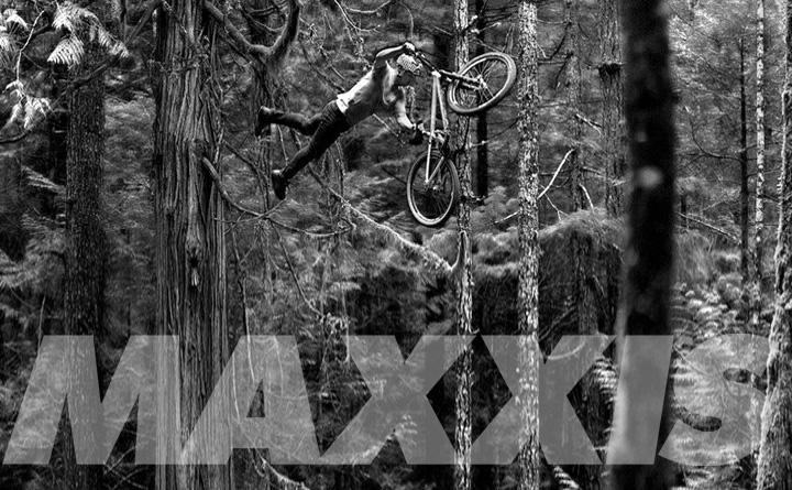 maxxis вело гуми